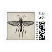 insect postage stamps  in association with Zazzle.com
