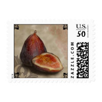 fresh fig postage stamps  in association with Zazzle.com