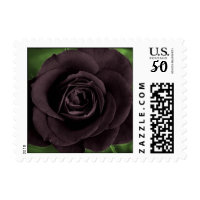 black rose postage stamps  in association with Zazzle.com