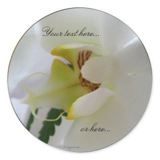 Orchid White Flower Stickers / Wedding Stickers sticker