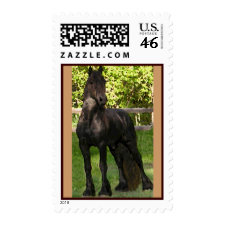 Stallion Postage Stamps stamp