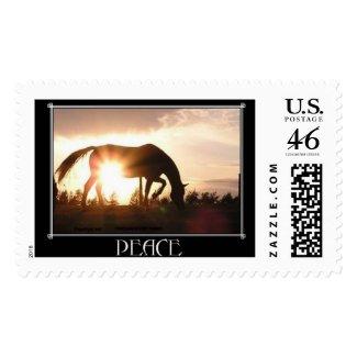 SunRise Horse Postage stamp
