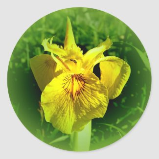 Yellow Flower Stickers sticker